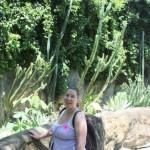 Kaktuszok... oda nem szivesen borulnék be.