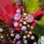 Apa adott anyának virágot Valentin-napra!